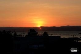 Paracas - Seres Reales Blog (21)